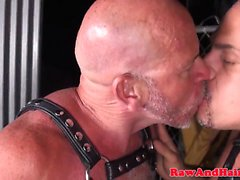 Leather fetish bear barebacks chubby mature